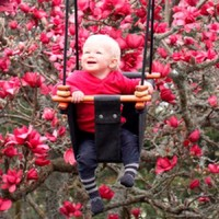 SOLVEJ Baby Swing - Slate Grey image