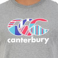 Canterbury: Mens CCC Uglies Tee - Gunmetal Marl (M)