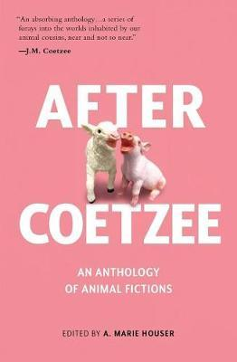 After Coetzee by Sixteen Remarkable Authors image