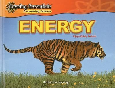 Energy by Vijaya Khisty Bodach
