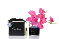 Côte Noire Perfumed Natural Touch Orchid Stem (Pink Blossom - Black)