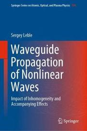Waveguide Propagation of Nonlinear Waves by Sergey Leble