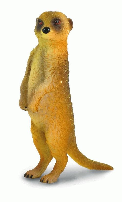 CollectA - Meerkat: Standing image