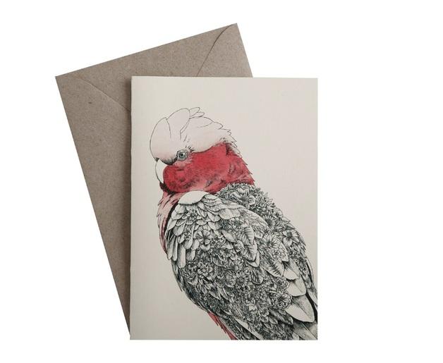 Maxwell & Williams: Marini Ferlazzo Birds Greeting Cards - Galah