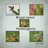 Broad-Tailed Hummingbirds by Lois Lake