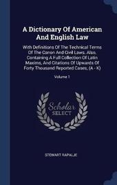A Dictionary of American and English Law by Stewart Rapalje image