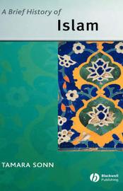 Brief History of Islam by Tamara Sonn image