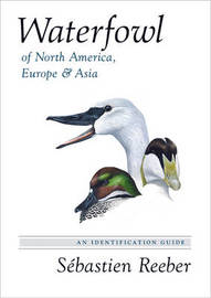 Waterfowl of North America, Europe, and Asia by Sebastien Reeber