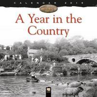 A Year in the Country wall calendar 2019 (Art calendar)