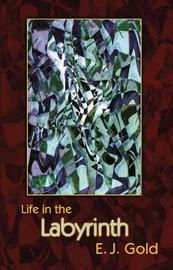 Life in the Labyrinth by E.J. Gold image