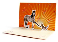 High Five Pop-up Notecards (10 Cards/Envelopes) by Chronicle Books