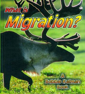 What is Migration? by John Crossingham image