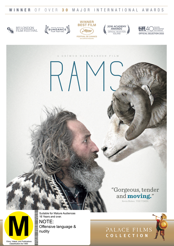 Rams on DVD