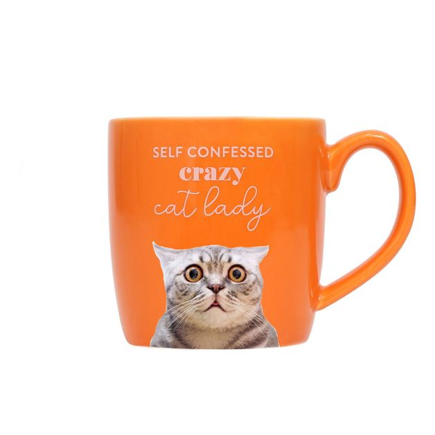 Splosh: Pet Crazy Mug