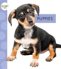 Puppies by Anastasia Suen