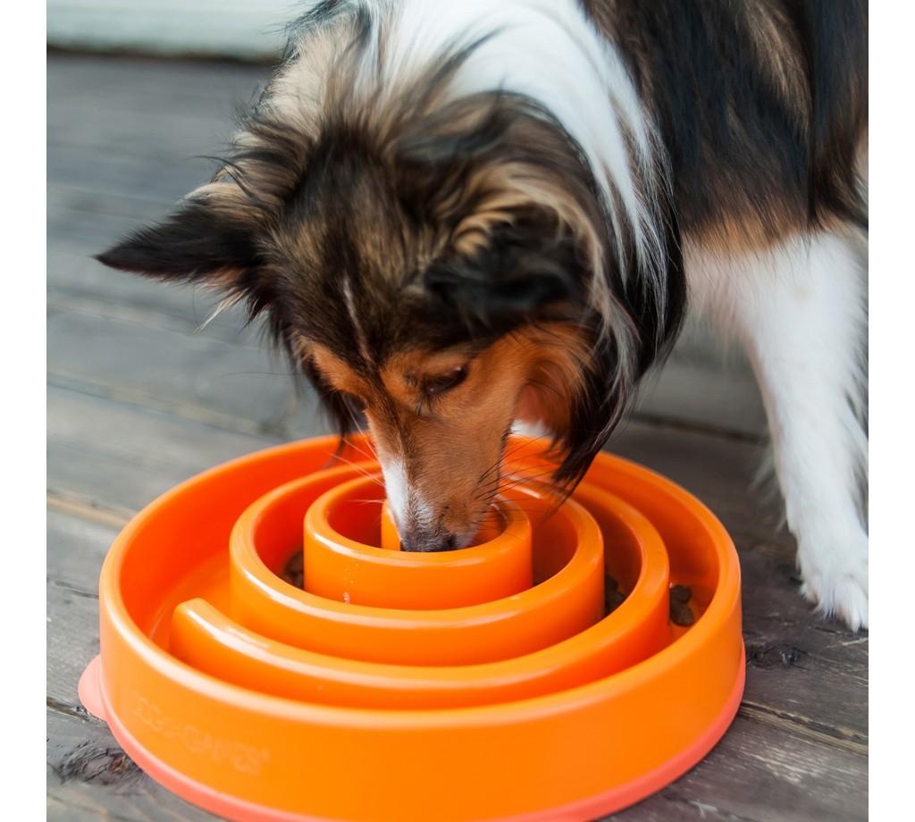 Slo Bowl Large - Orange image