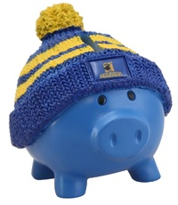 Antics: Super Rugby Piggy Bank - Highlanders