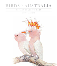 Birds of Australia, The Art of Jeremy Boot 2019 Deluxe Wall Calendar