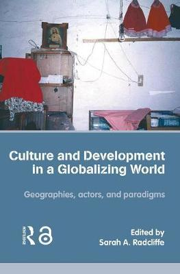 Culture and Development in a Globalizing World image
