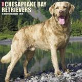 Just Chesapeake Bay Retrievers 2018 Wall Calendar (Dog Breed Calendar) by Willow Creek Press