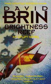 Brightness Reef by David Brin image