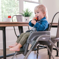 Ingenuity:Smartserve High Chair - Connolly