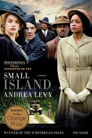 Small Island by Andrea Levy image