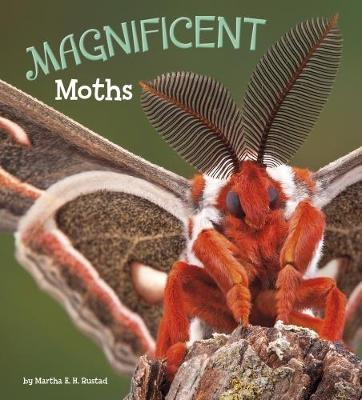 Magnificent Moths by Martha E.H. Rustad image