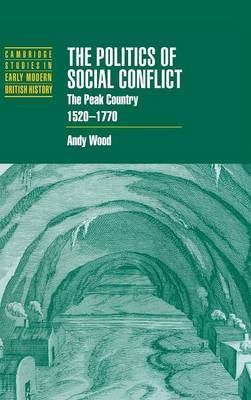 The Politics of Social Conflict by Andy Wood