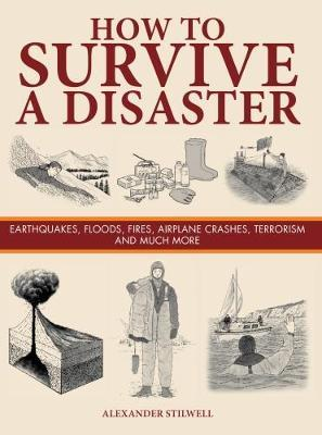 How to Survive a Disaster by Alexander Stilwell image