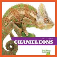 Chameleons by Cari Meister