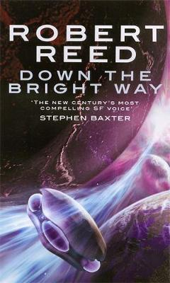 Down The Bright Way by Robert Reed image