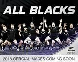 All Blacks 2018 Desk Easel Calendar