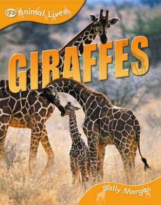 Giraffes by Sally Morgan
