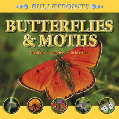 Butterflies and Moths by Barbara Taylor