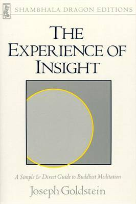 The Experience Of Insight by Joseph Goldstein image