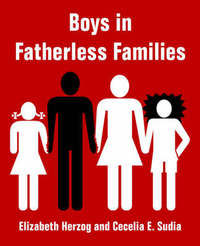 Boys in Fatherless Families by Elizabeth Herzog