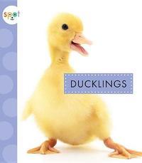 Ducklings by Anastasia Suen