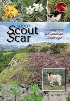 About Scout Scar by Jan Wiltshire