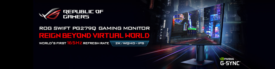 Asus 165Hz Ultimate Gaming Monitor!