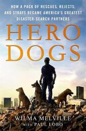 Hero Dogs by Paul Lobo