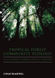 Tropical Forest Community Ecology image