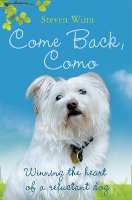 Come Back, Como by Steven Winn