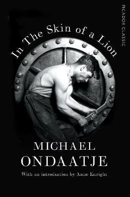 In the Skin of a Lion by Michael Ondaatje image