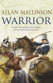 Warrior by Allan Mallinson image