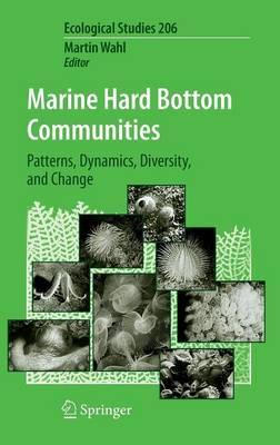 Marine Hard Bottom Communities image