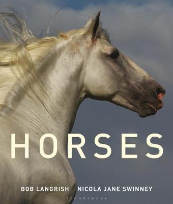 Horses by Nicola Jane Swinney image