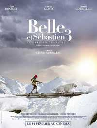 Belle & Sebastian: Friends For Life on DVD