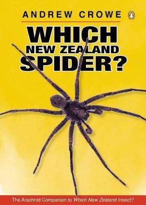 Which New Zealand Spider? by Andrew Crowe