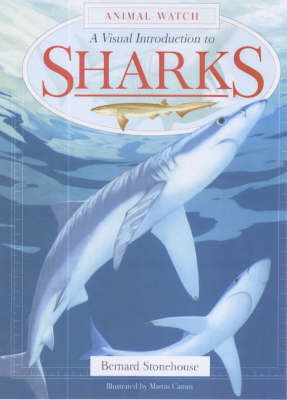 A Visual Introduction to Sharks by Bernard Stonehouse image